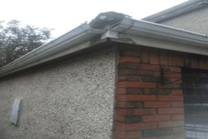 Gutter Repairs Limerick