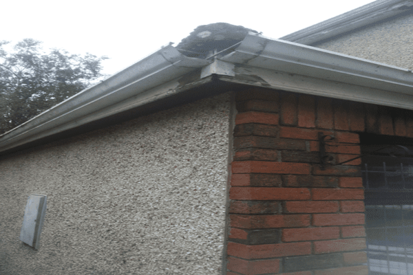 Fascia Board Gutter Replacement in Dublin southdublinroofing.ie
